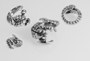 Prsten z chirurgické oceli Škorpión