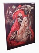 2D Obraz Smrťák s Dollores