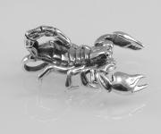 3.Stříbrný přívěsek, menši varianta Škorpión