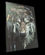 1.Fotografie se 3D efektem, motiv Vlk