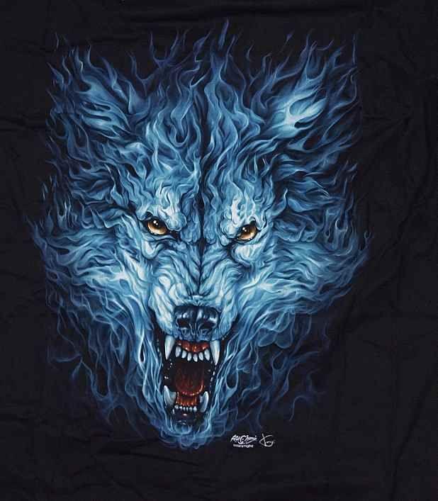 Tričko kr. rukáv Zvíře Fainner, detail.